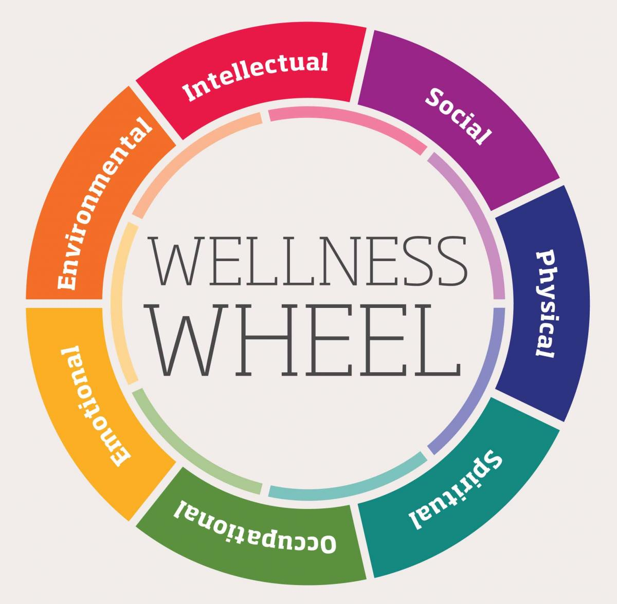 Worksheets Wellness Wheel Worksheet building your own wellness wheel jamie meets world